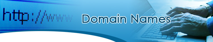 Picking the Right Domain Name